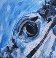 2007 Eye I