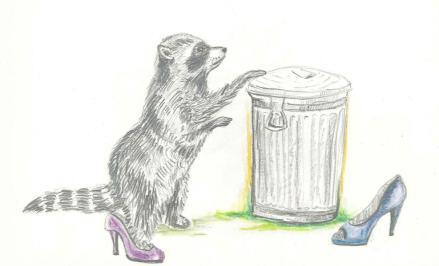 Raccoon bin