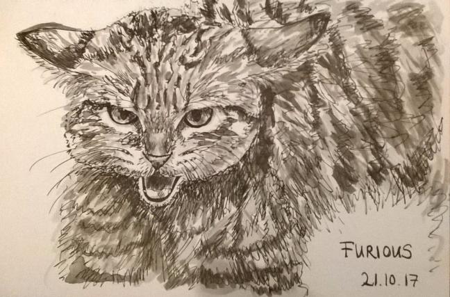 211017 Furious inktober