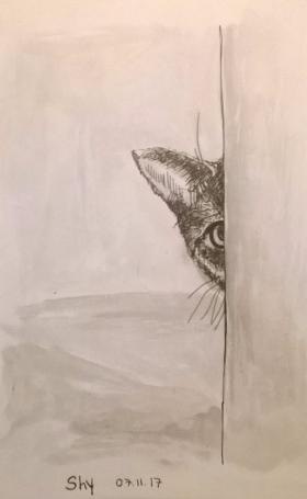 Shy inktober 17
