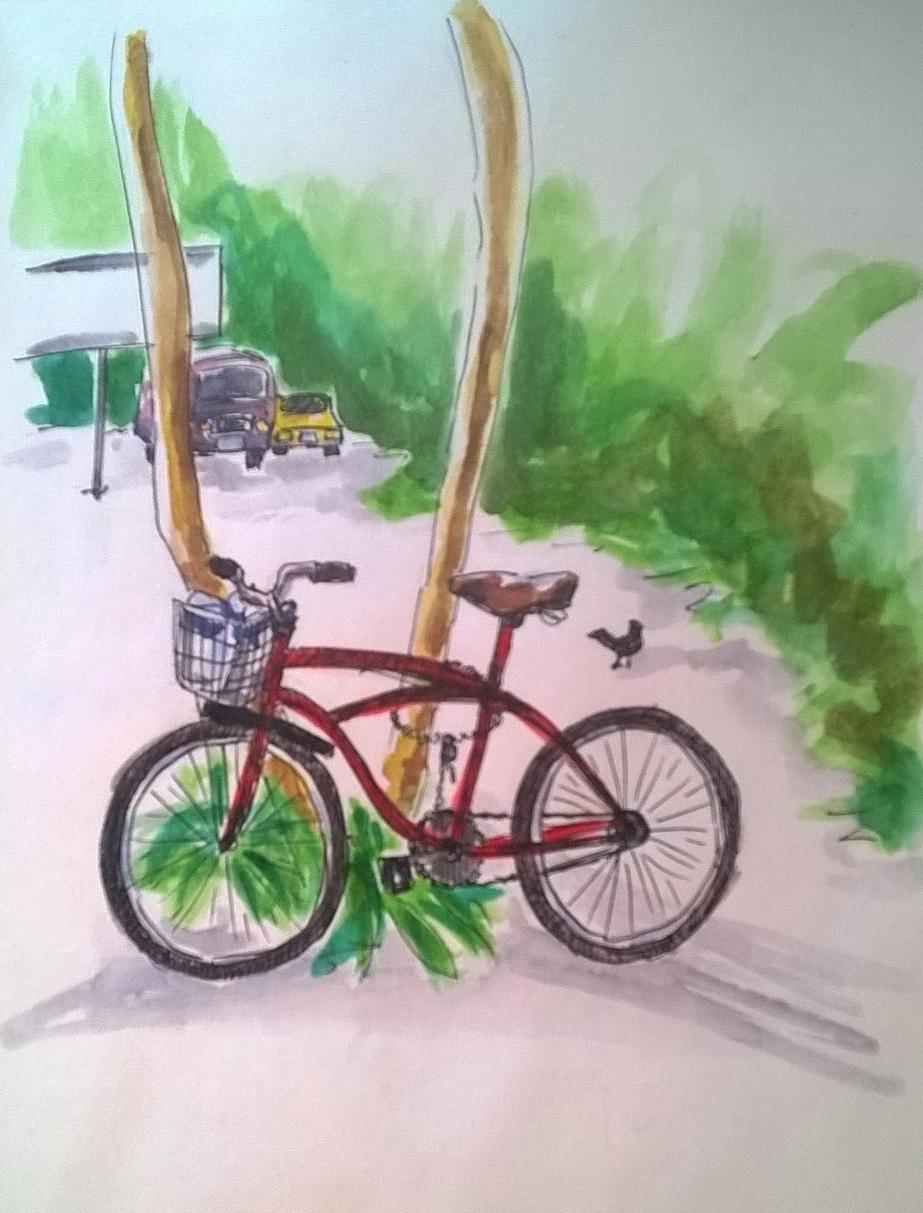 1803 Tulum bike