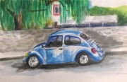 1804 Malinalco beetle 3