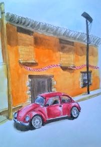 1804 Malinalco beetle
