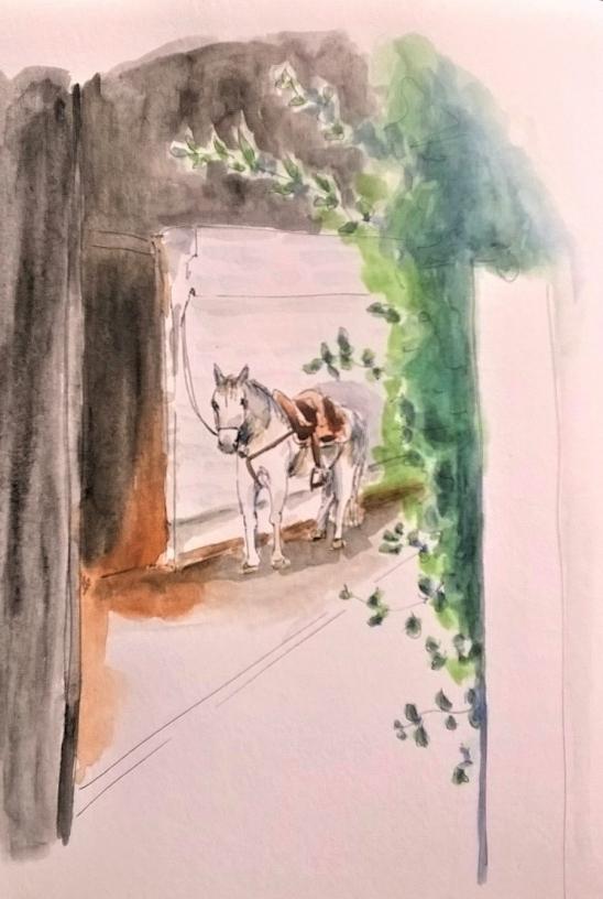 1804 Malinalco white horse 2