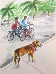 1803 Tulum dog 2 by Mel Franz