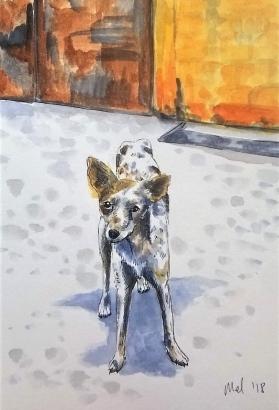 1804 Malinalco dog by Melanie Franz
