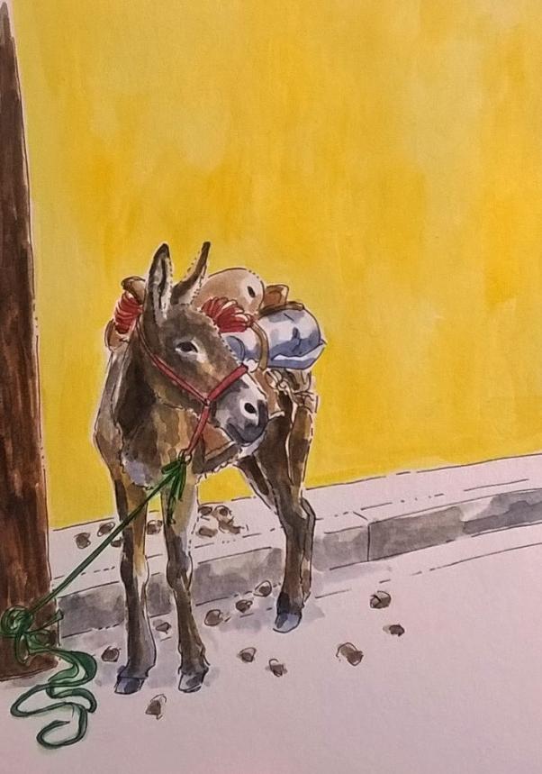 1806 Malinalco donkey II