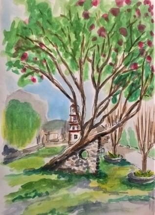 1806 Malinalco tree_Melanie Franz