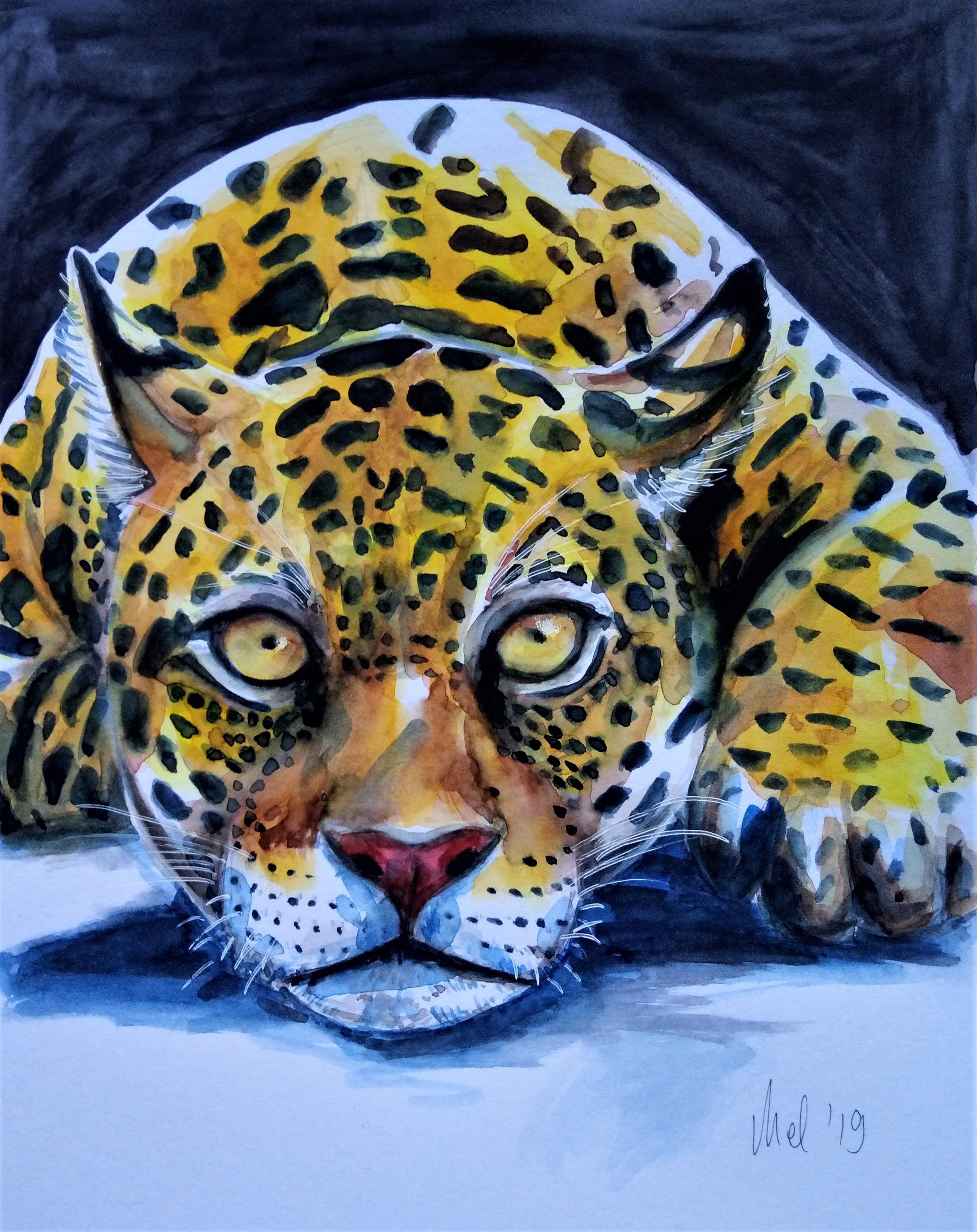 190226 Jaguar 1_Melanie Franz