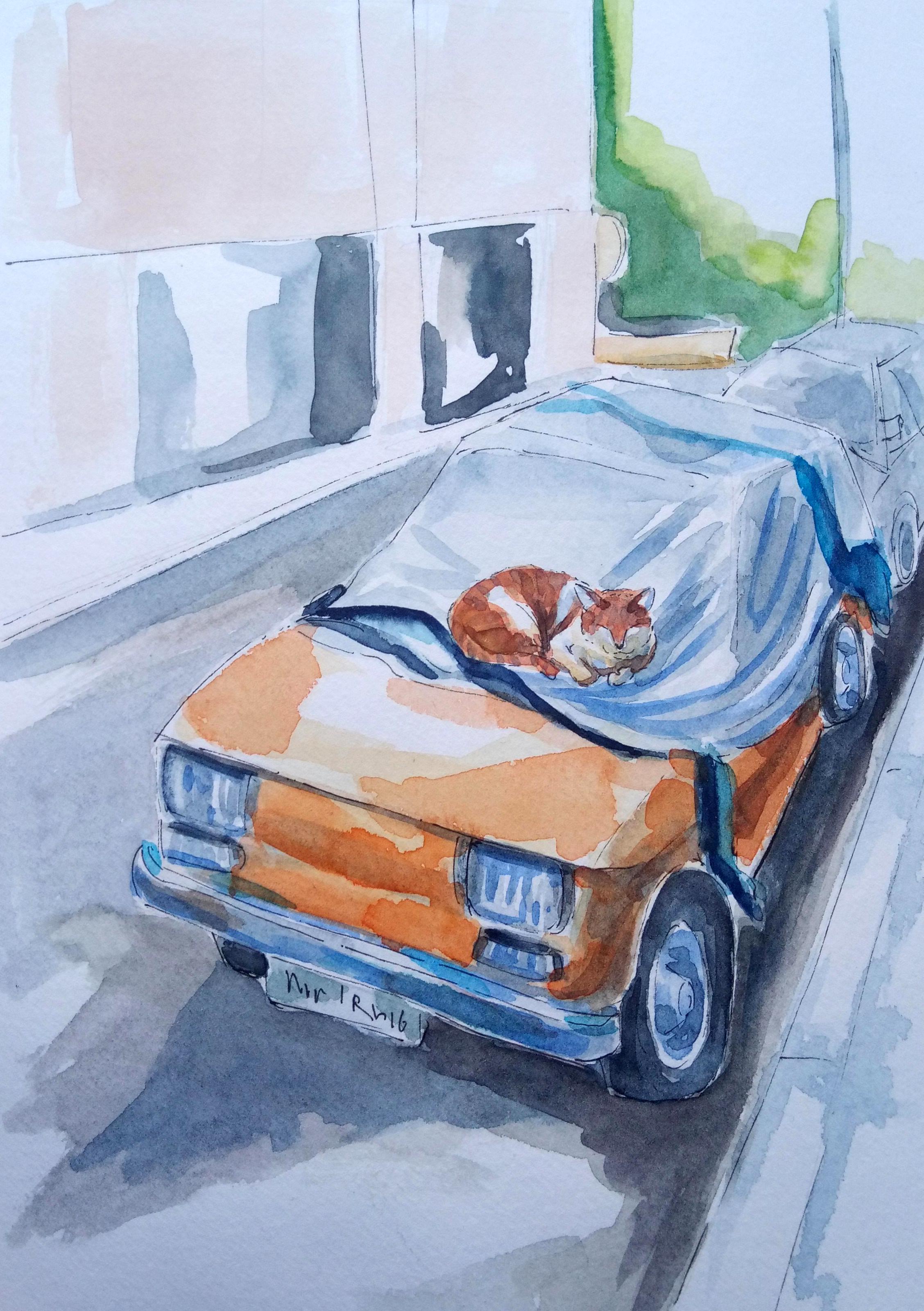 190405 Cat on car Athens Kypseli_Melanie Franz