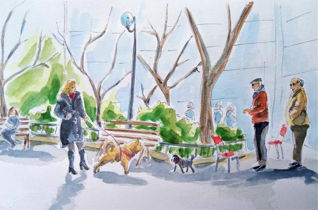 1905 Kypseli park dogs_Melanie Franz