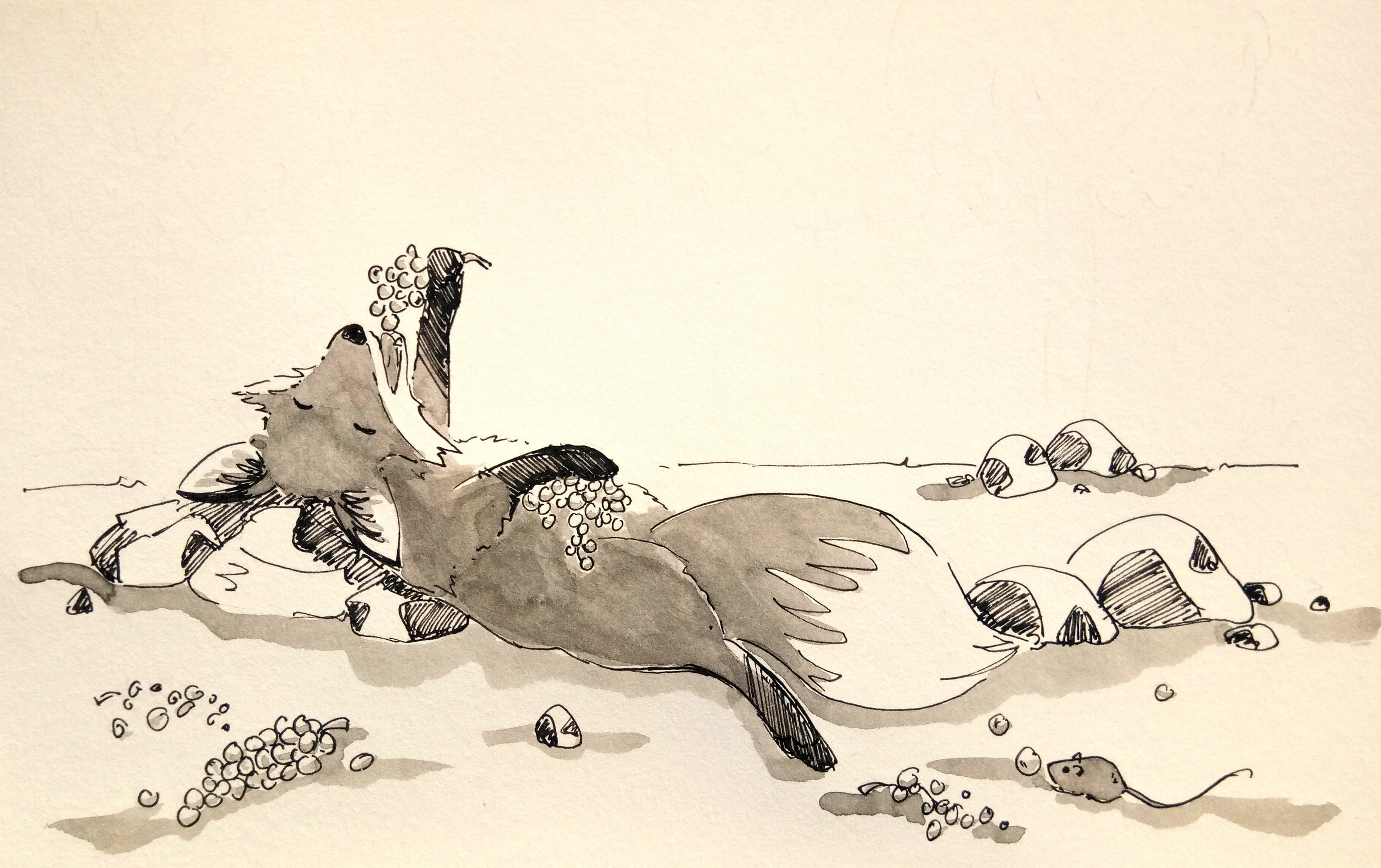 191031 Inktober_Ripe_Melanie Franz