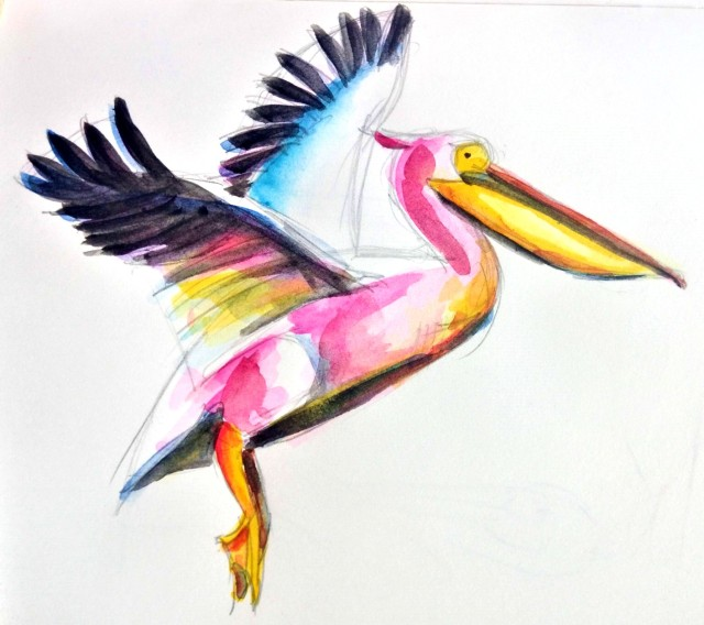 20_06-flight of the pelican_ Melanie Franz