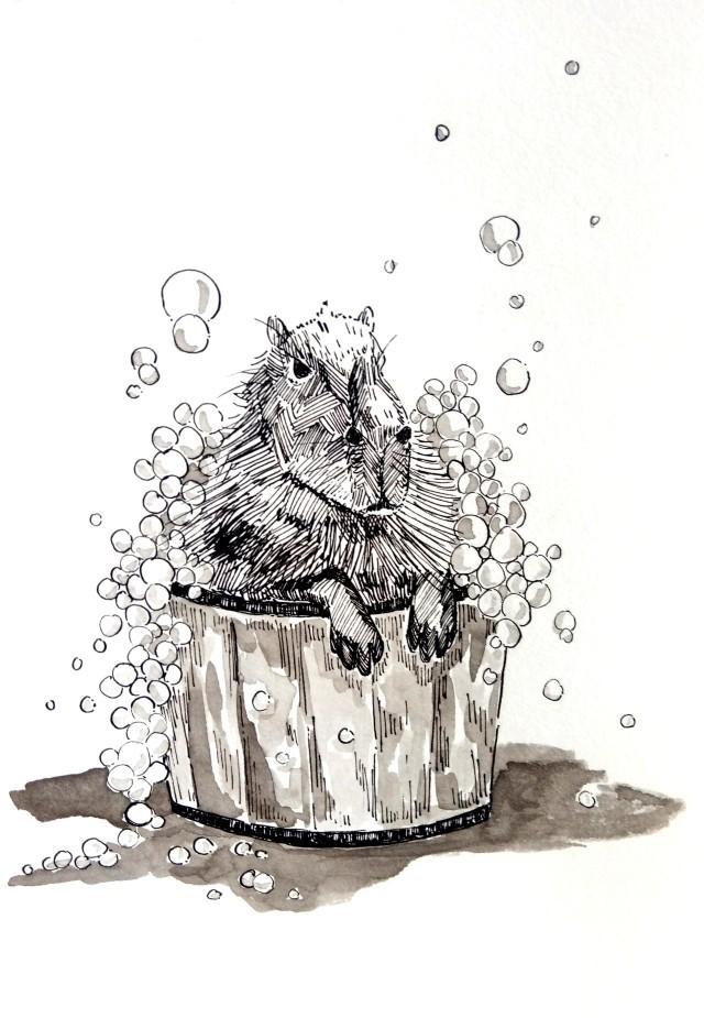 201014 Inktober_Washing day_Capybara_Melanie Franz