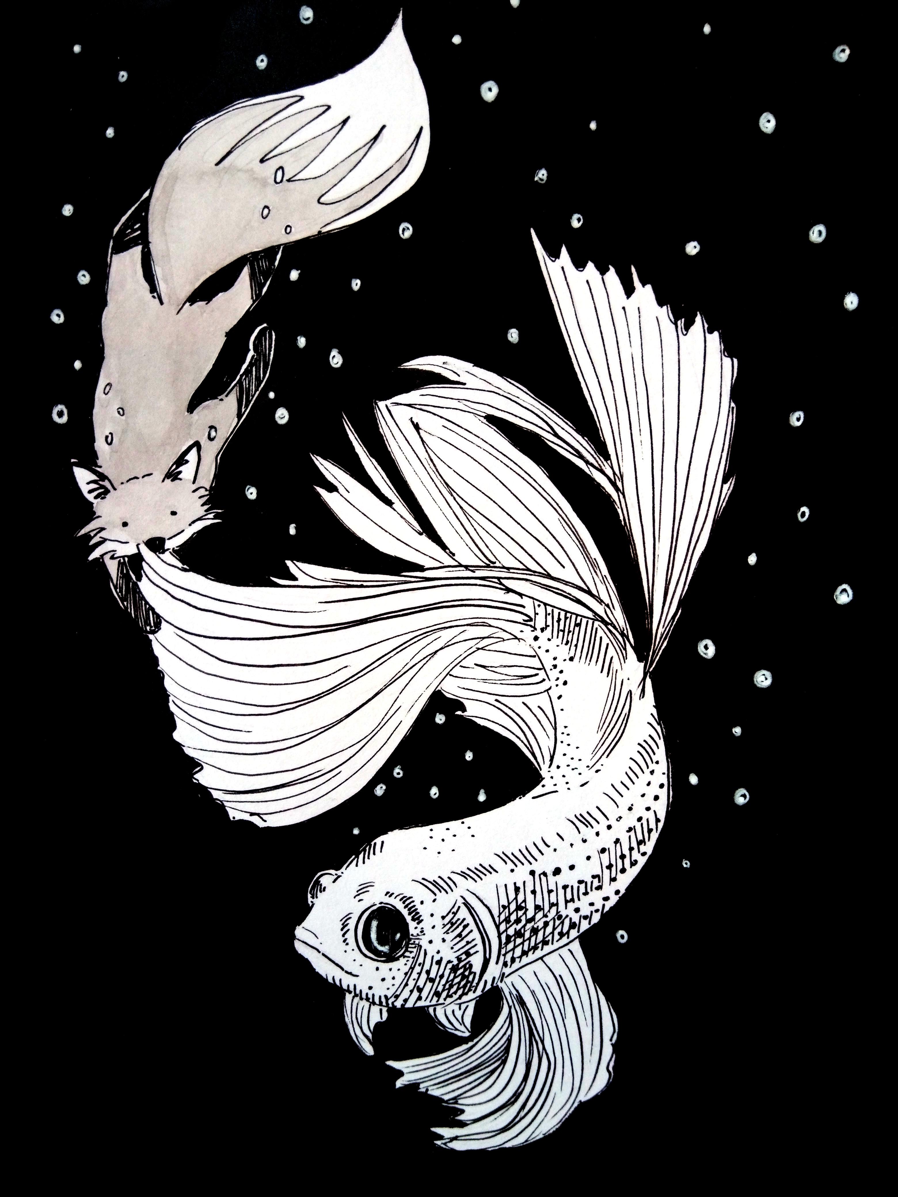 201101-catching-fish-Melanie Franz