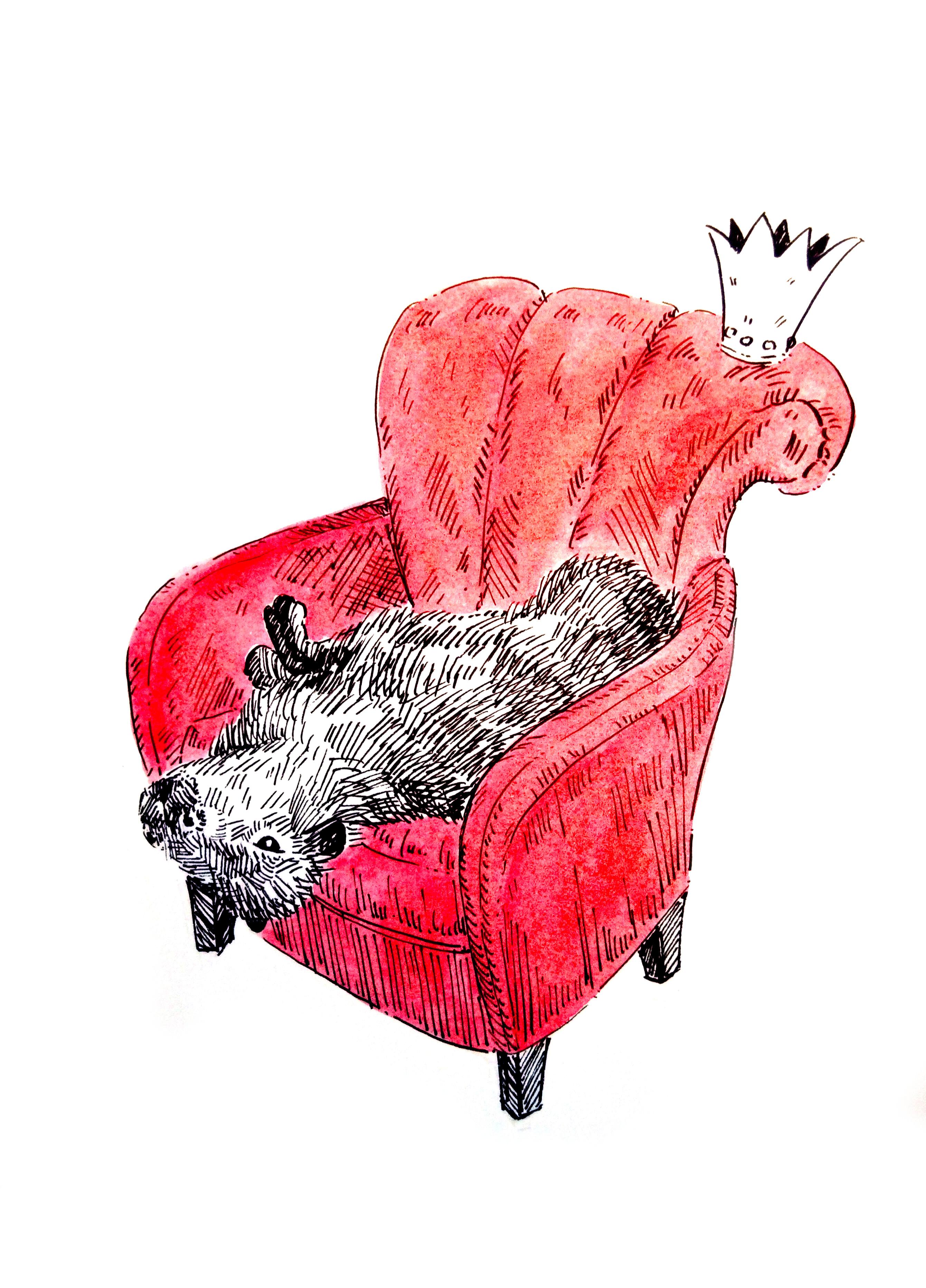 201212-carybara-king-crown_Melanie Franz