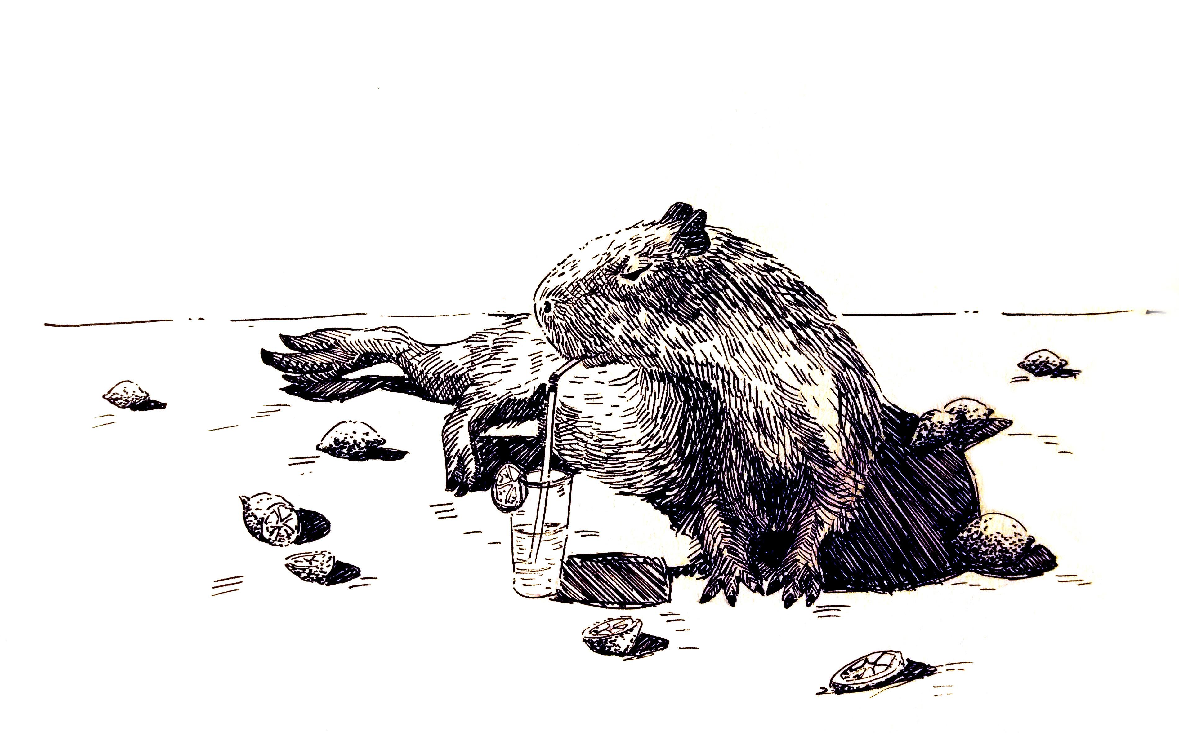 201220-inktober_capybara_lemonade_Melanie Franz