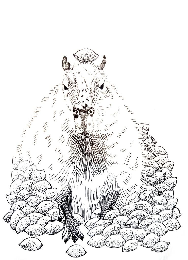 210106 Capybara Lemon pile_Melanie Franz