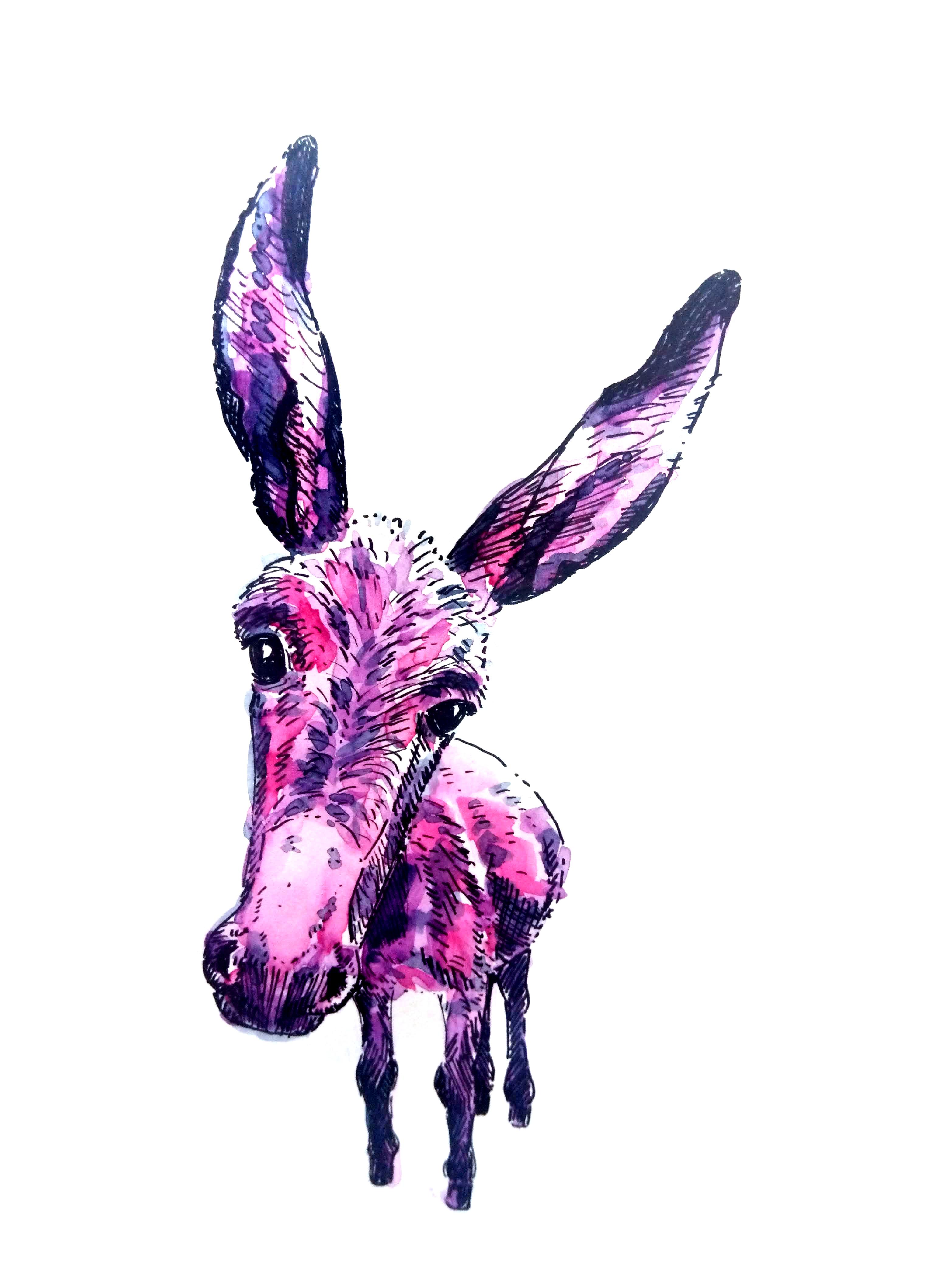 210520-donkey Melanie Franz