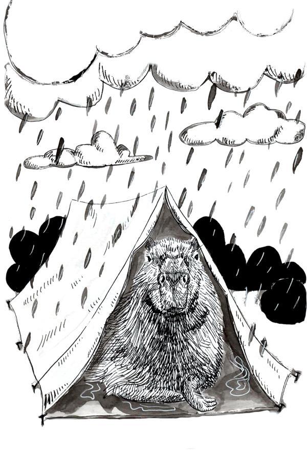20 capybara camping_Melanie Franz