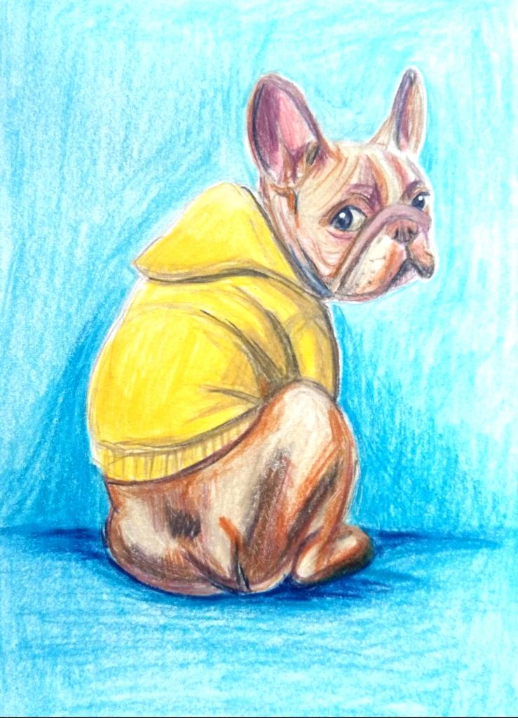 2108 French Bulldog_Melanie Franz