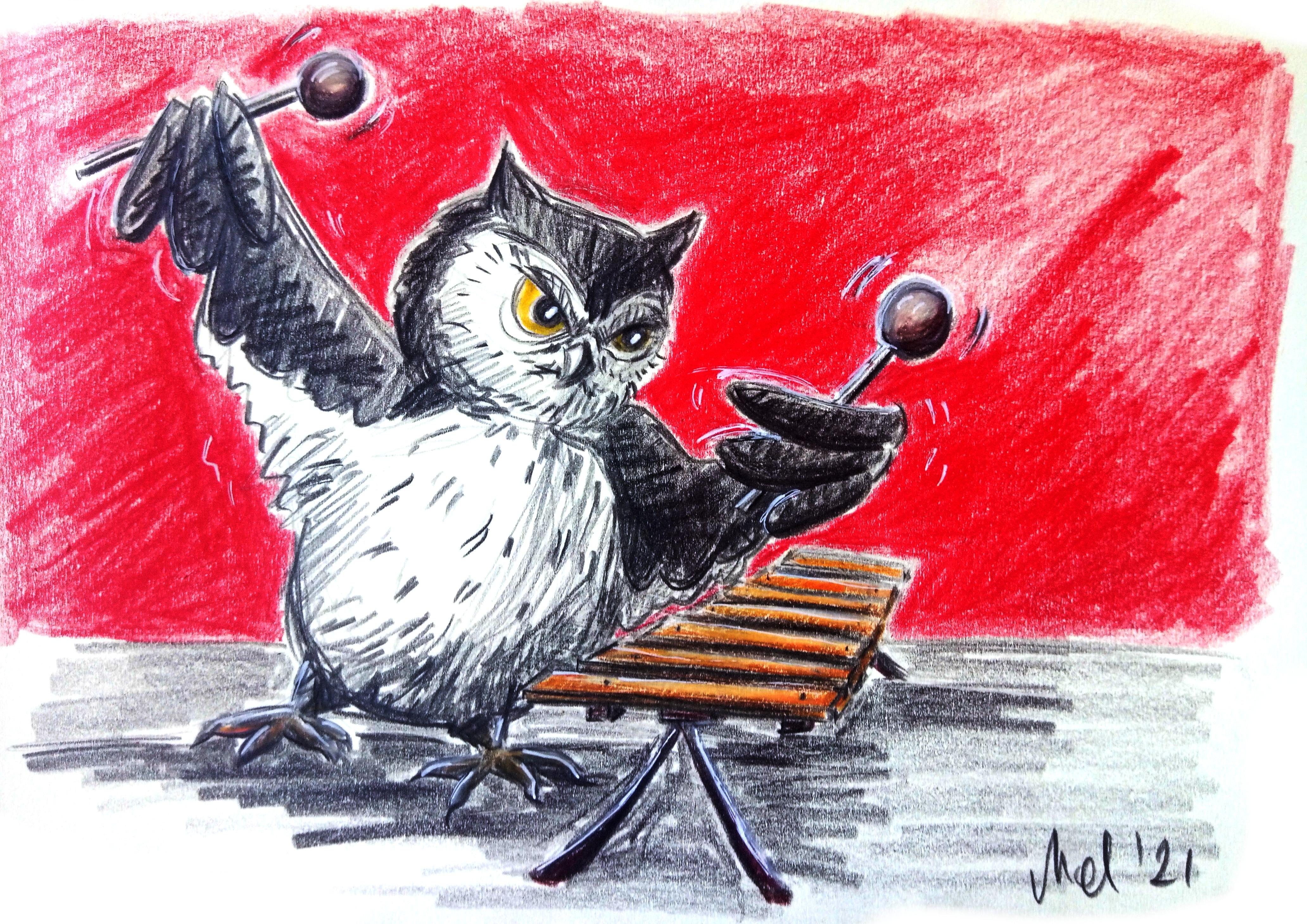 210821 Owl playing Xylophon_Melanie Franz