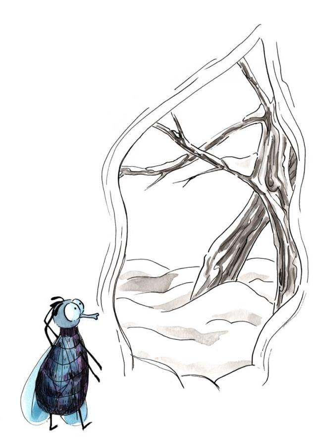 Fly in tree_Melanie Franz